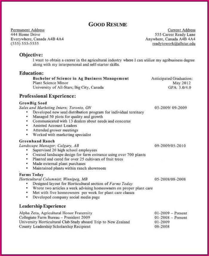 Functional Resume Template Canada