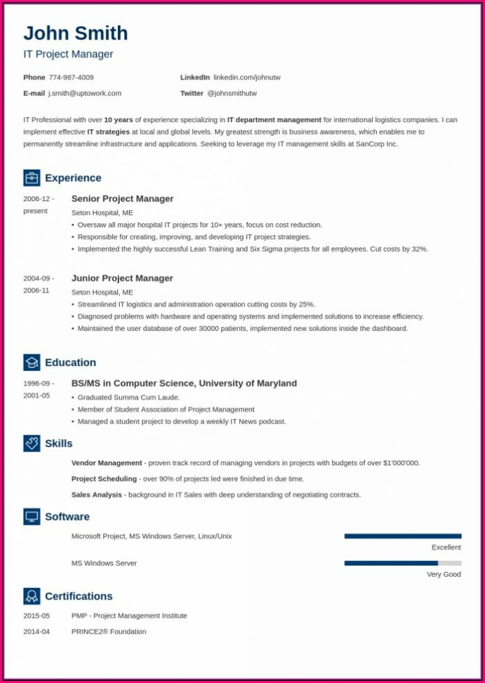Modern Professional Cv Template Word Free Download