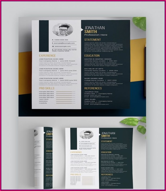 Professional Creative Resume Templates