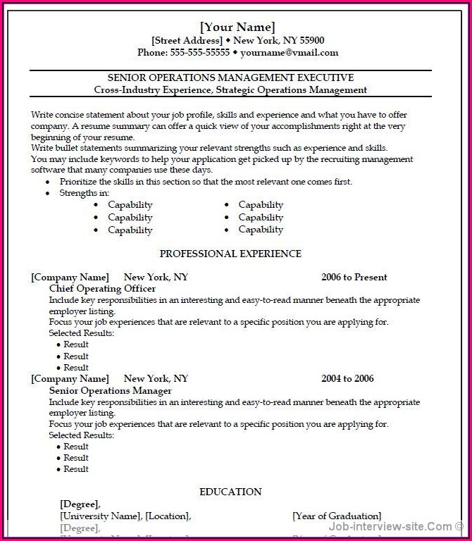 Resume Format For It Professional In Word
