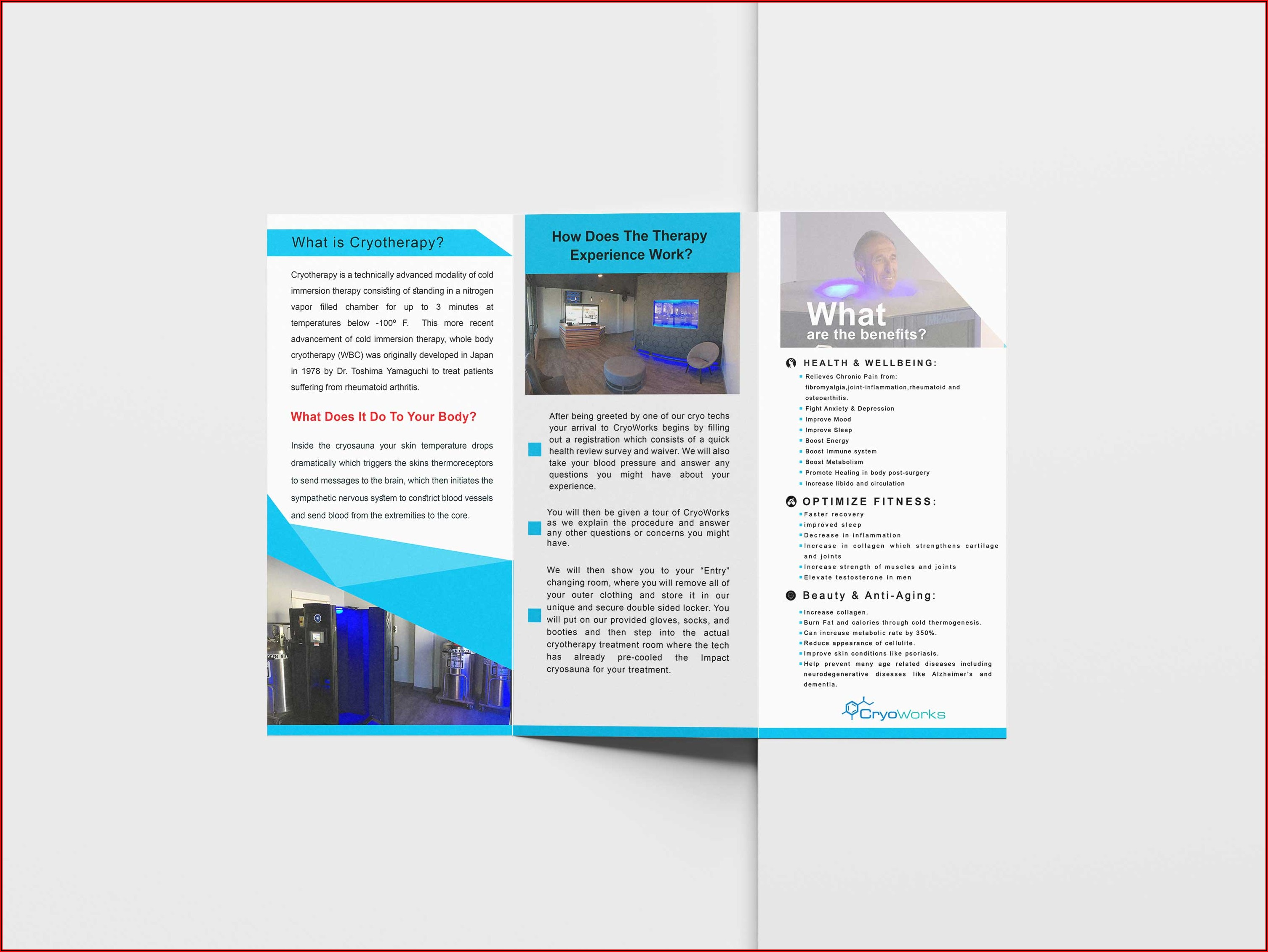 Tri Fold Brochure Template Free Download