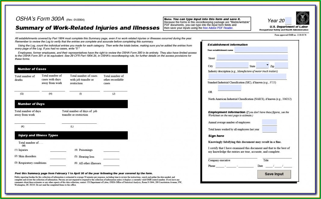 Osha Form 300 Pdf Fillable