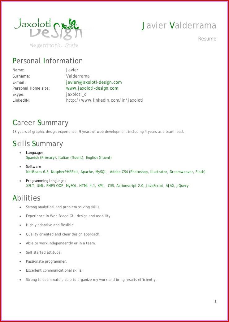 Senior Php Programmer Resume