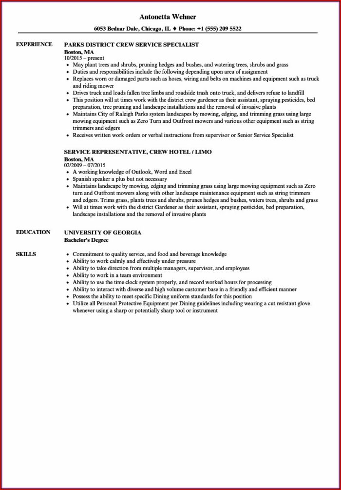 Tree Trimmer Resume Template