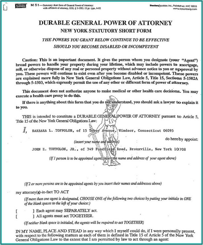 New York Durable Power Of Attorney Long Form