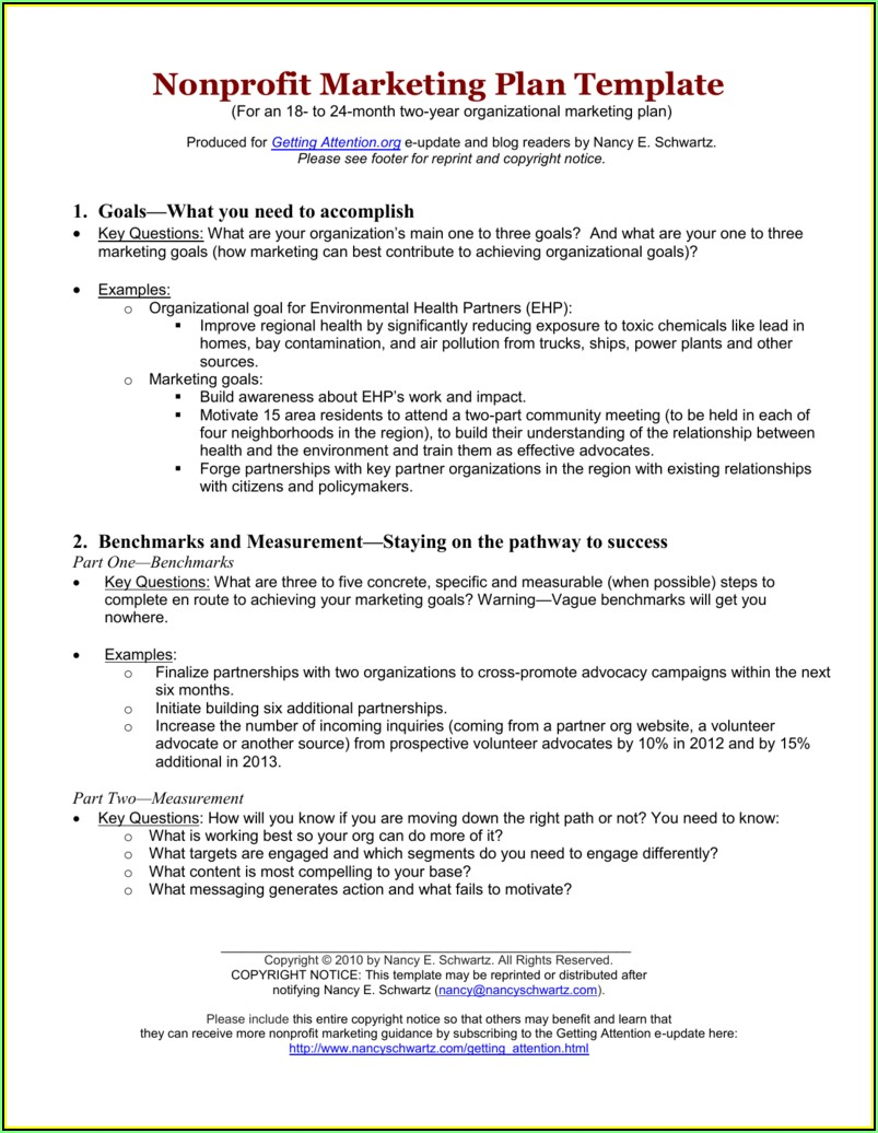 Non Profit Organization Marketing Plan Template