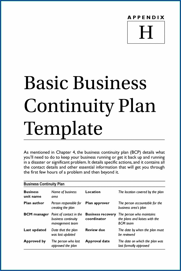Small Business Continuity Plan Example Doc