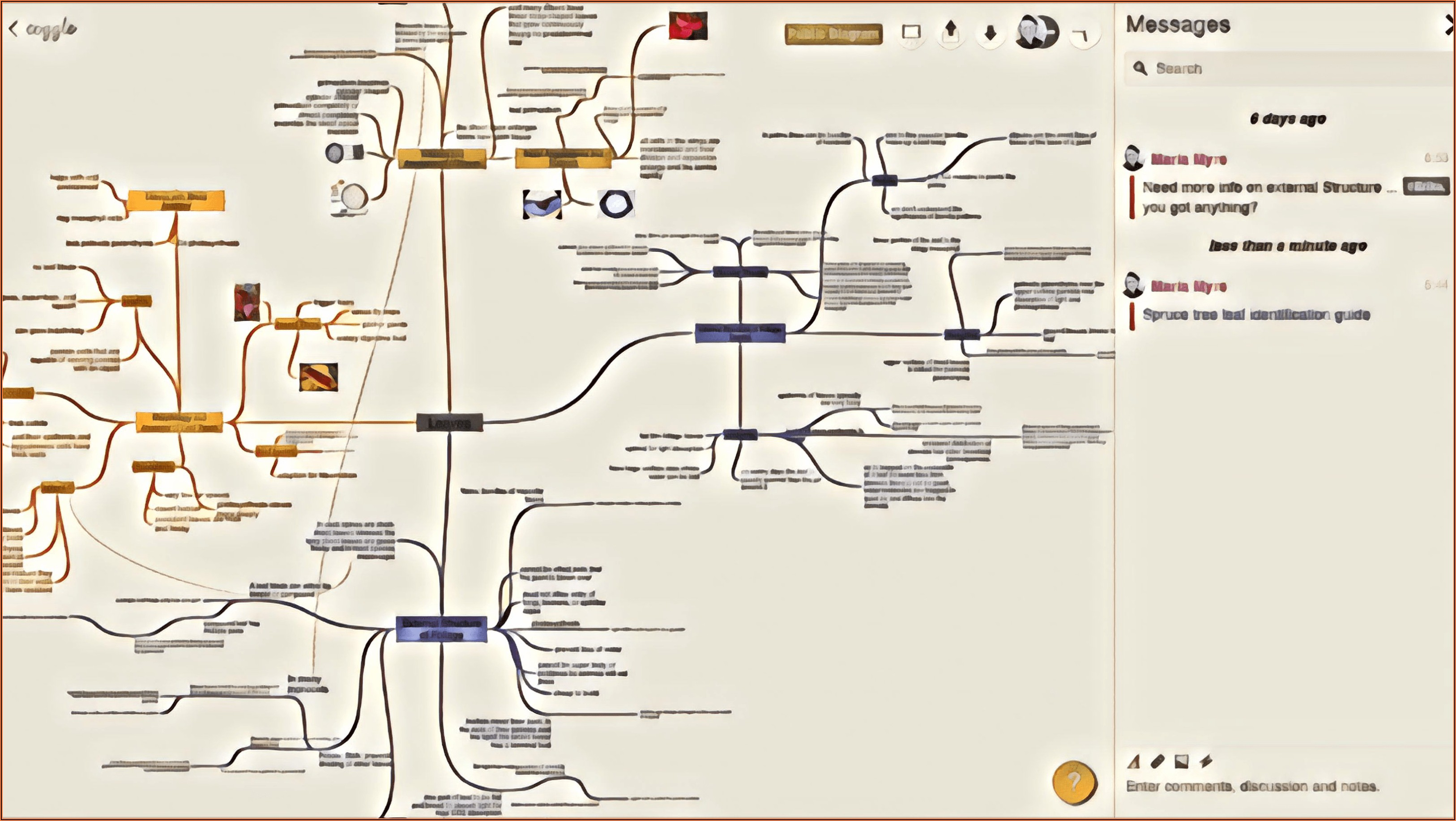 The Best Mind Mapping Software In 2019