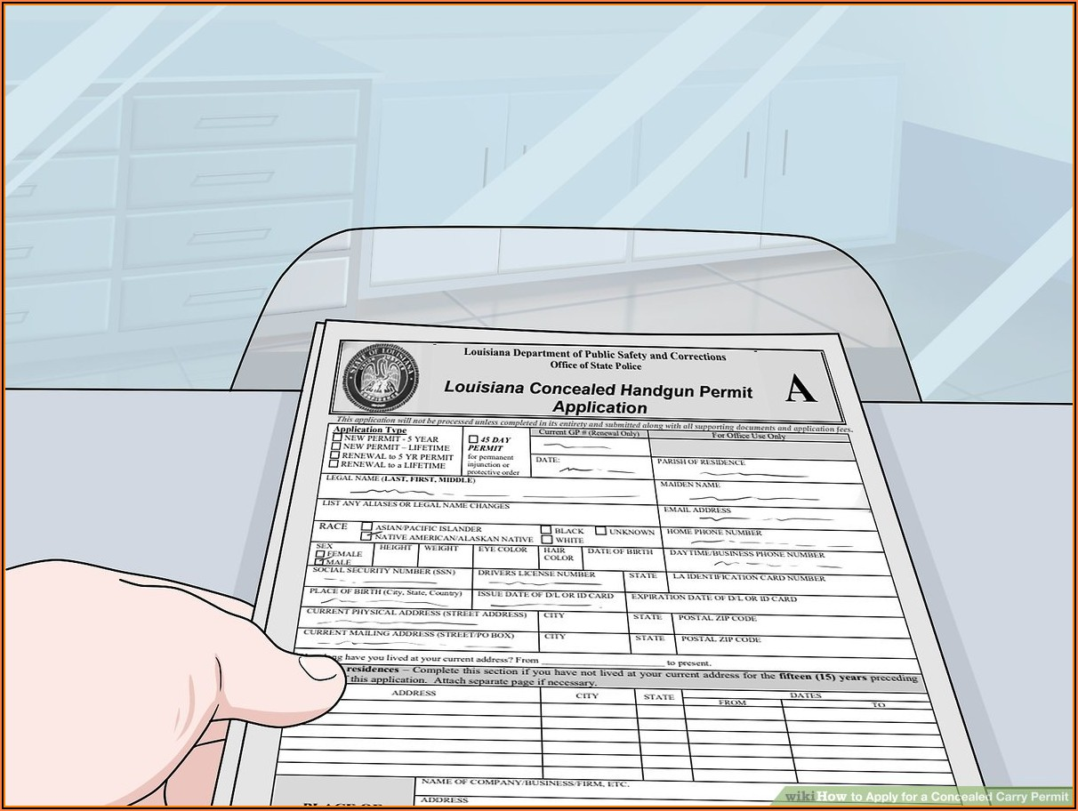 Florida Concealed Weapons Permit Renewal Application Form