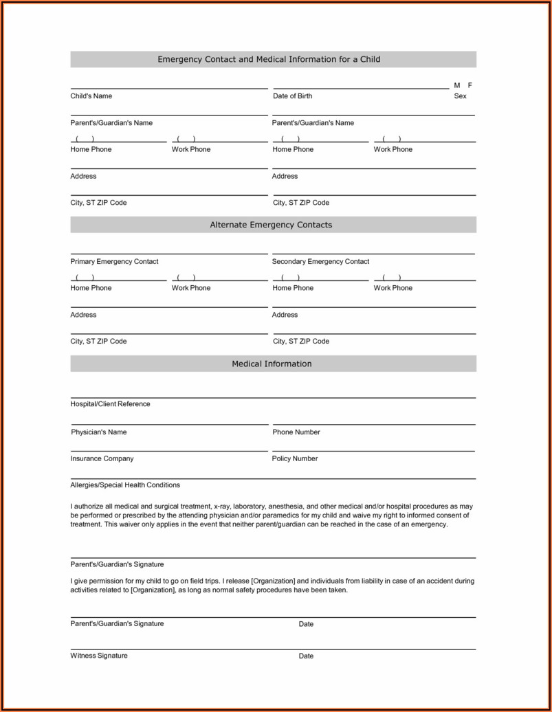 Free Temporary Guardianship Form Idaho