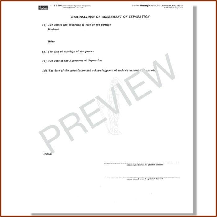 Legal Separation Agreement Form New York