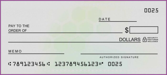 Blank Checks Template Free