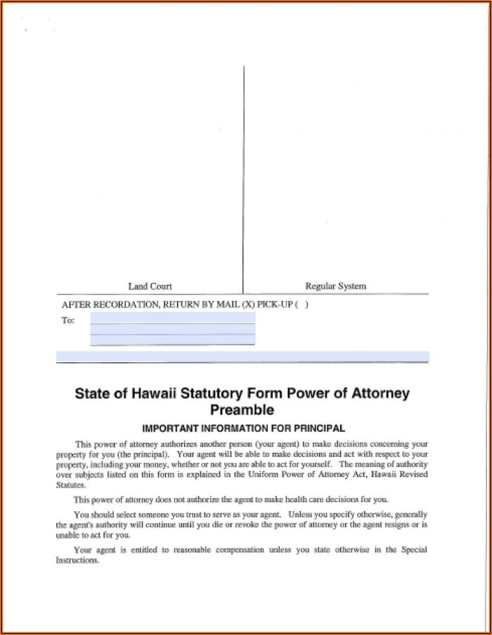 Limited Power Of Attorney Form Hawaii