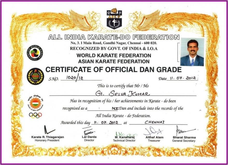 Martial Arts Certificate Templates Vector