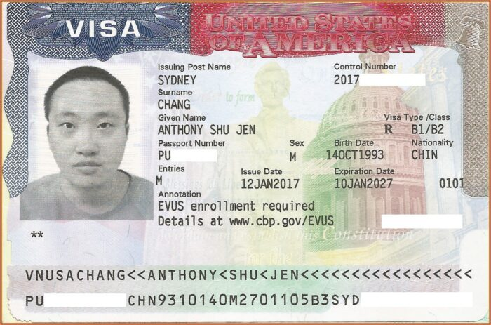 Nigeria Visa Application Form Pdf