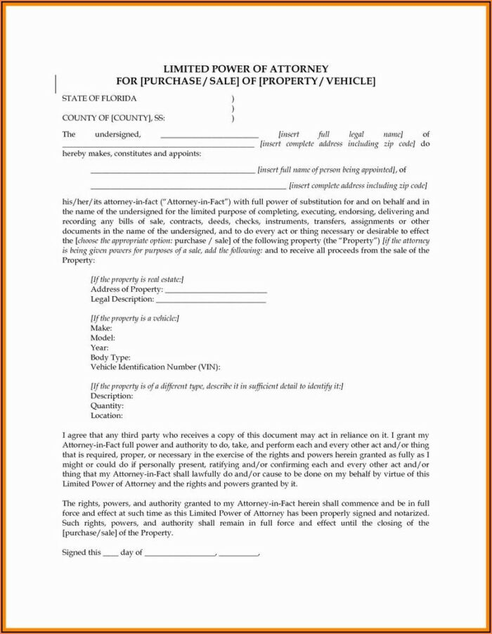Power Of Attorney Temporary Guardianship Form