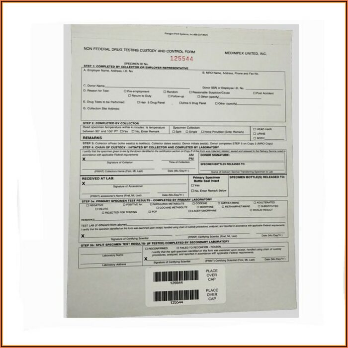 Sample Chain Of Custody Form For Drug Testing