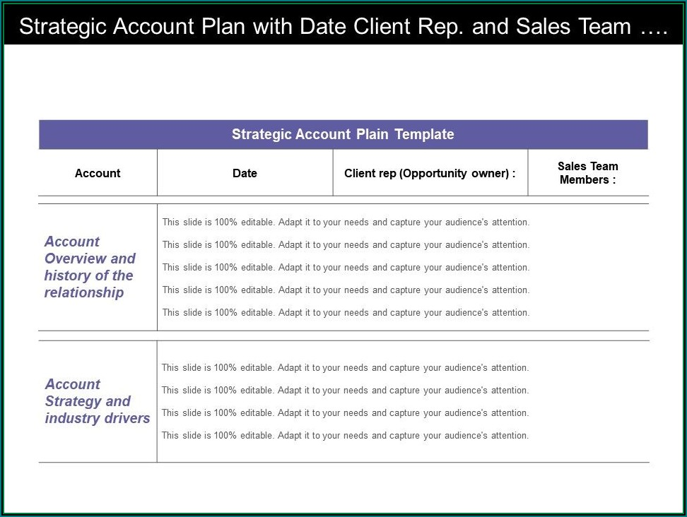 Sales Rep Account Planning Template