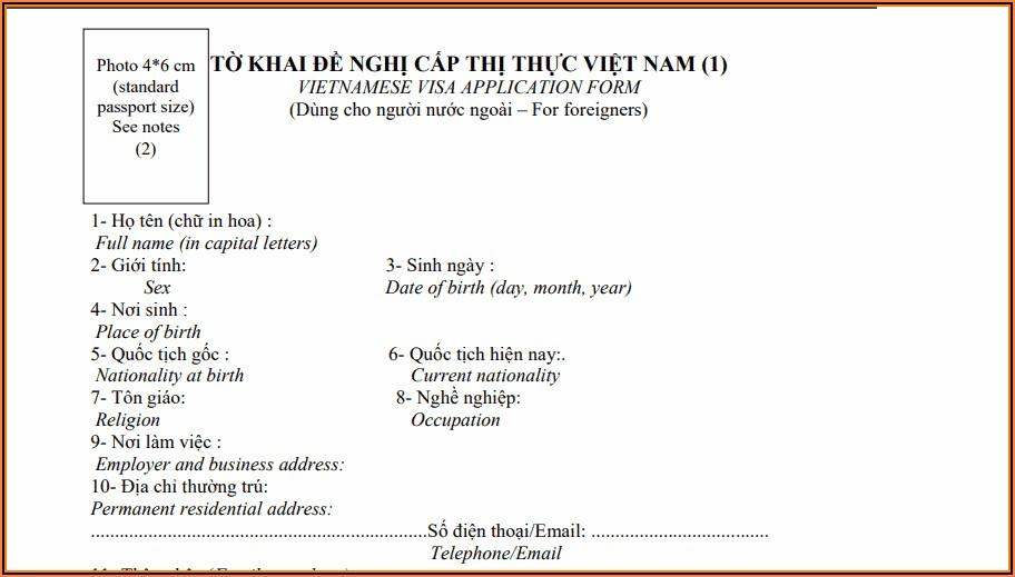 Vietnamese Visa Application Form Sample