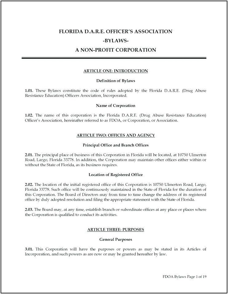 Bylaws Template For S Corporation