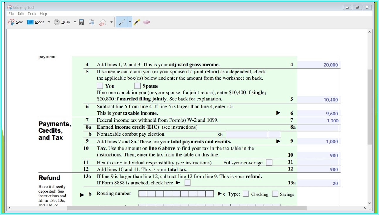 Federal 1040ez Tax Form