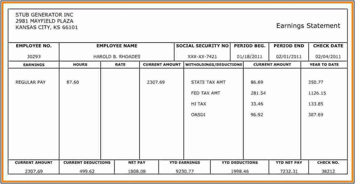 Template For Pay Stub