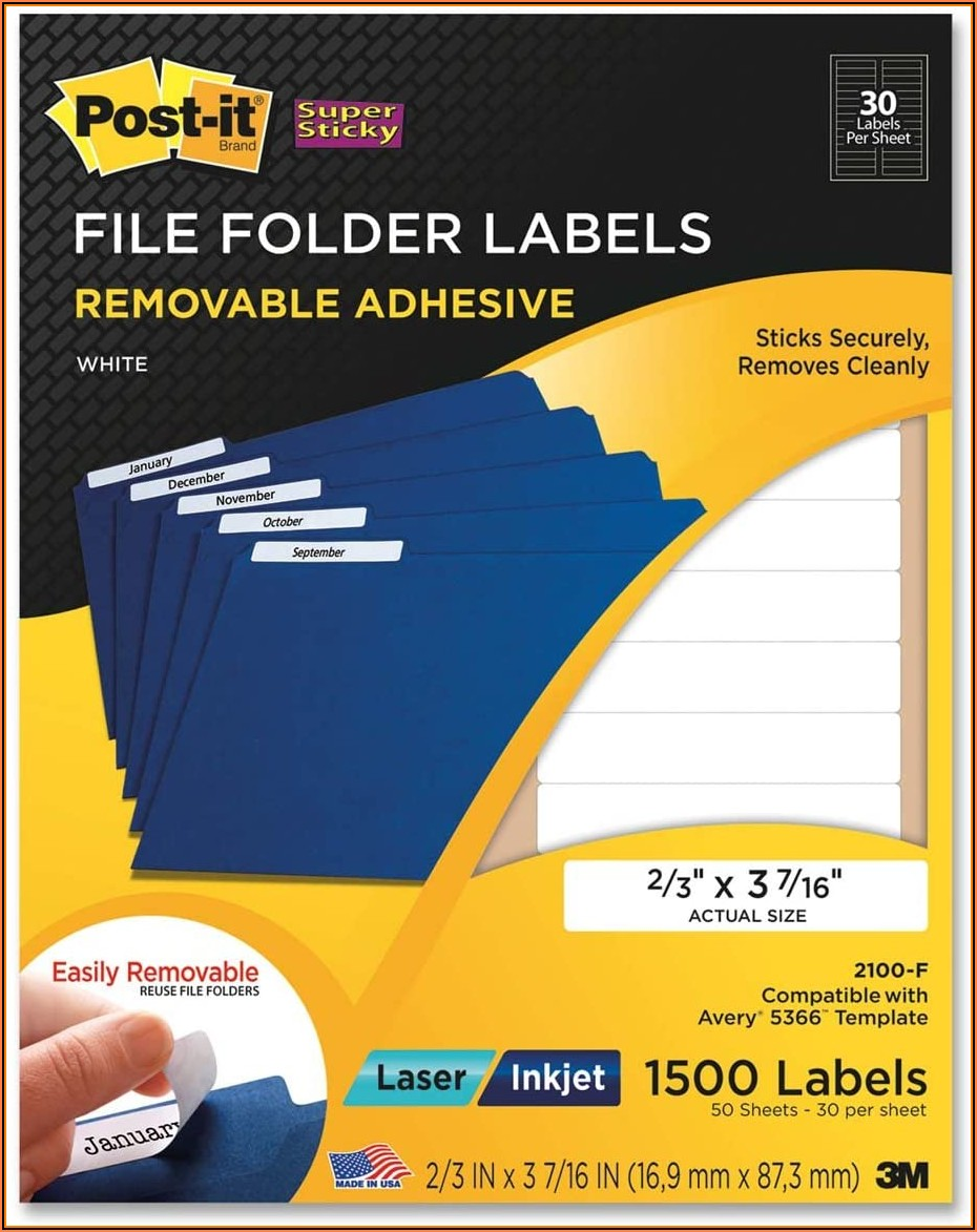 Avery File Label Template 8066