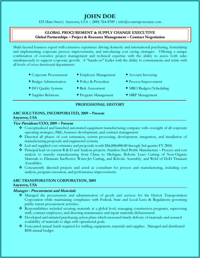 Best Executive Resume Templates 2020