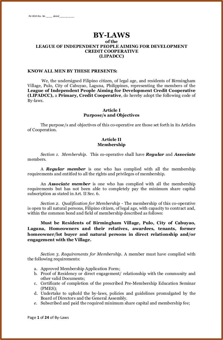 Company Bylaws Sample Philippines