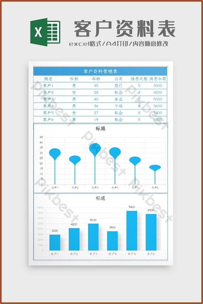 Customer Data Excel Template