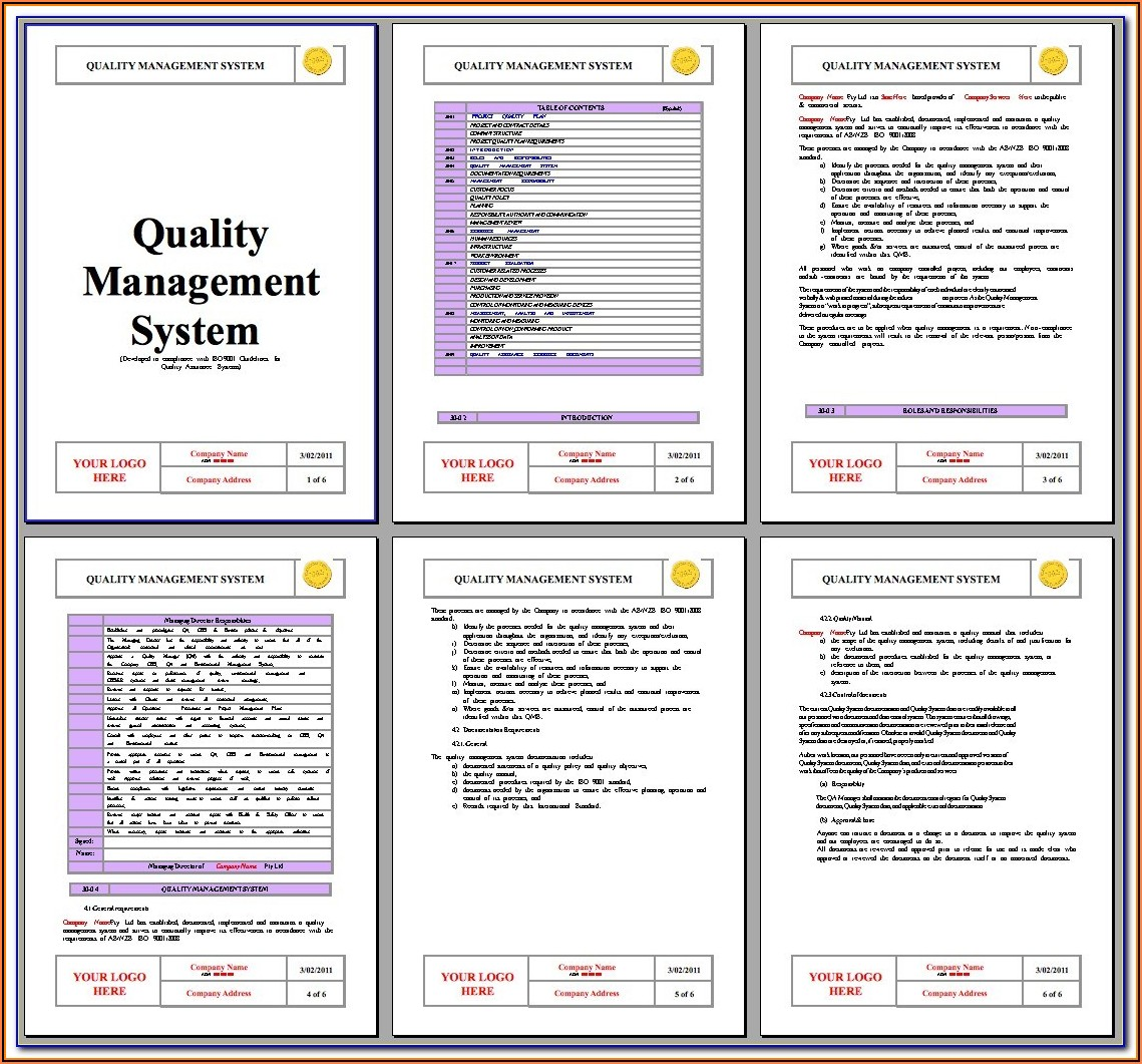 Iso 9001 Management Review Minutes Template