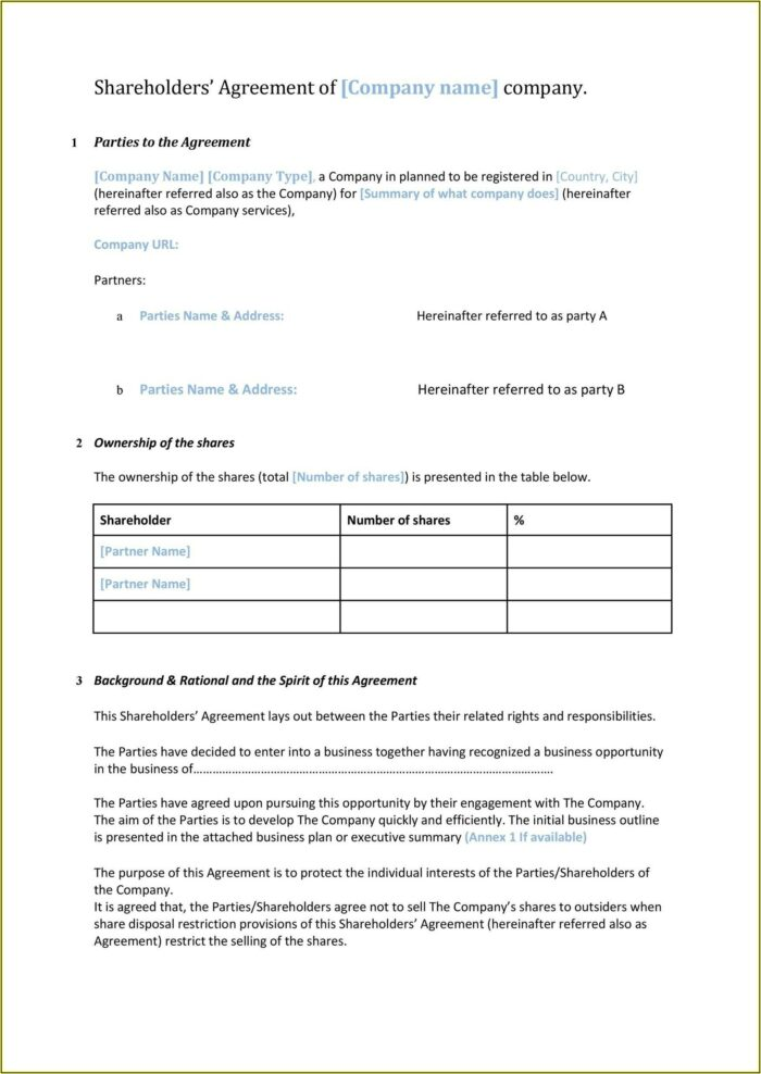Shareholder Agreements Template