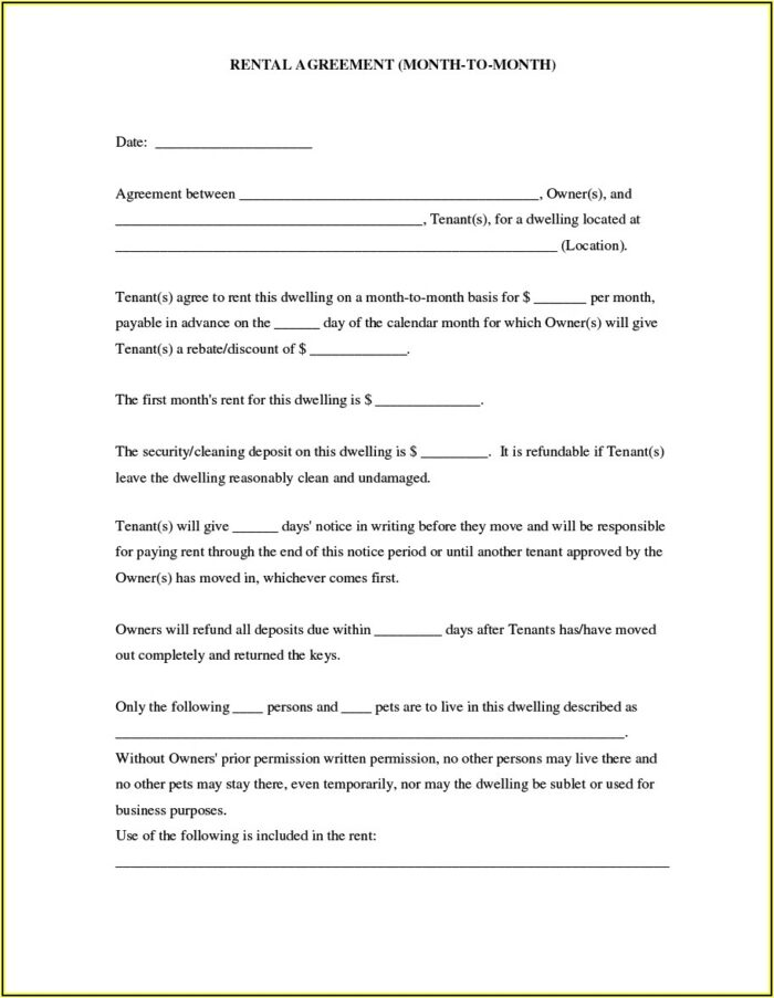 Simple Lease Agreement Template South Africa Word Document