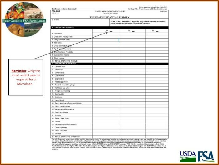 Usda Micro Loan Application Form