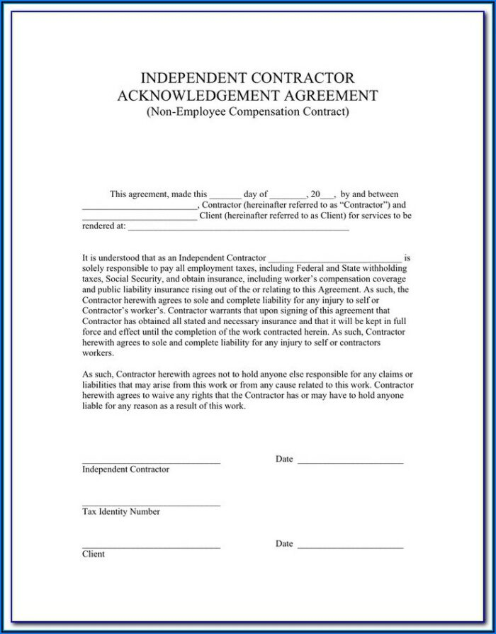 Independent Contractor Form 1099 Pdf