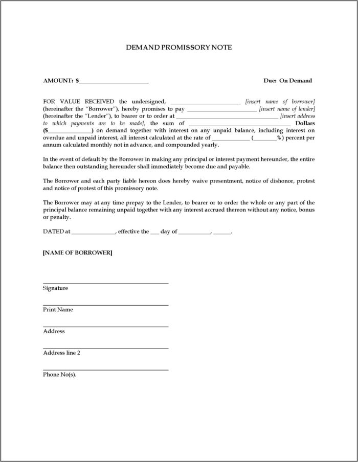 Promissory Note Template For Ontario