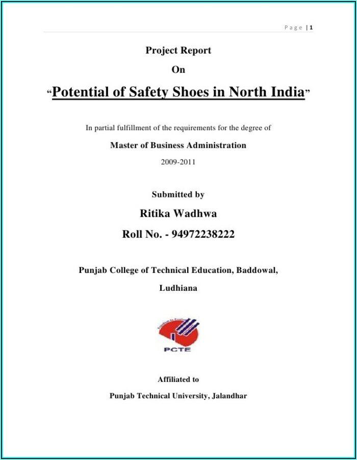 Safety Shoe Program Template