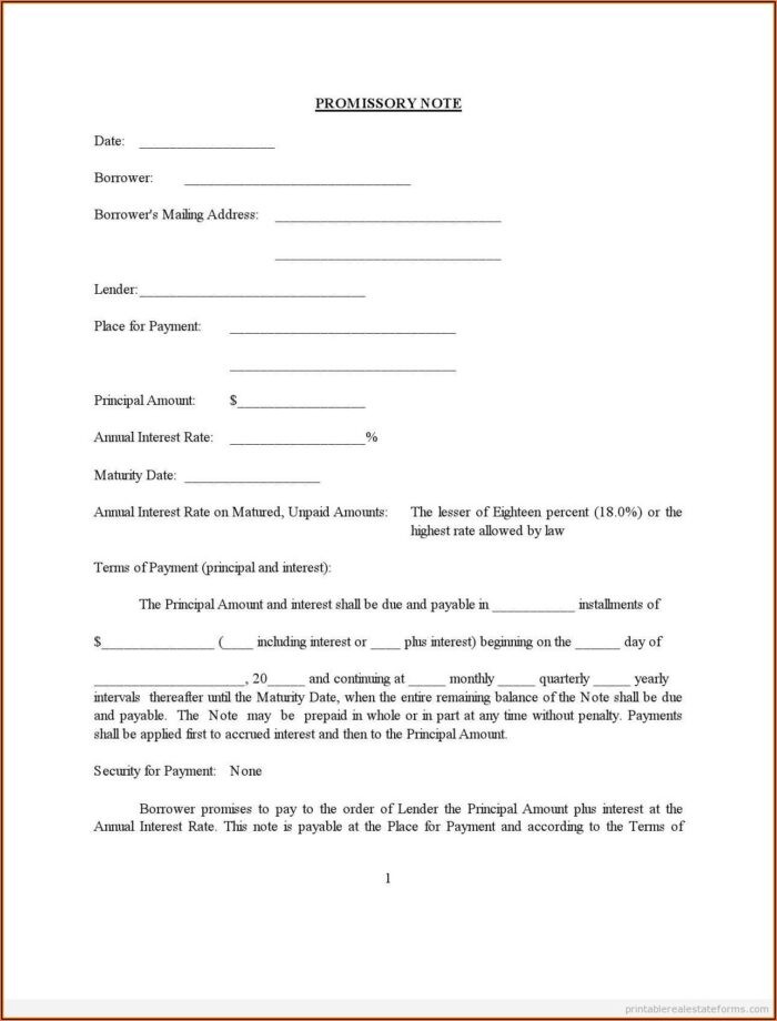 Sample Promissory Note Legal Forms