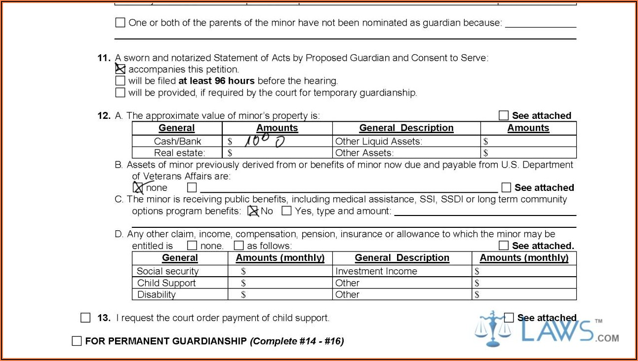 Temporary Guardianship Form Nyc