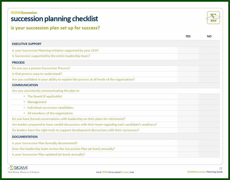 Examples Of Succession Planning Templates