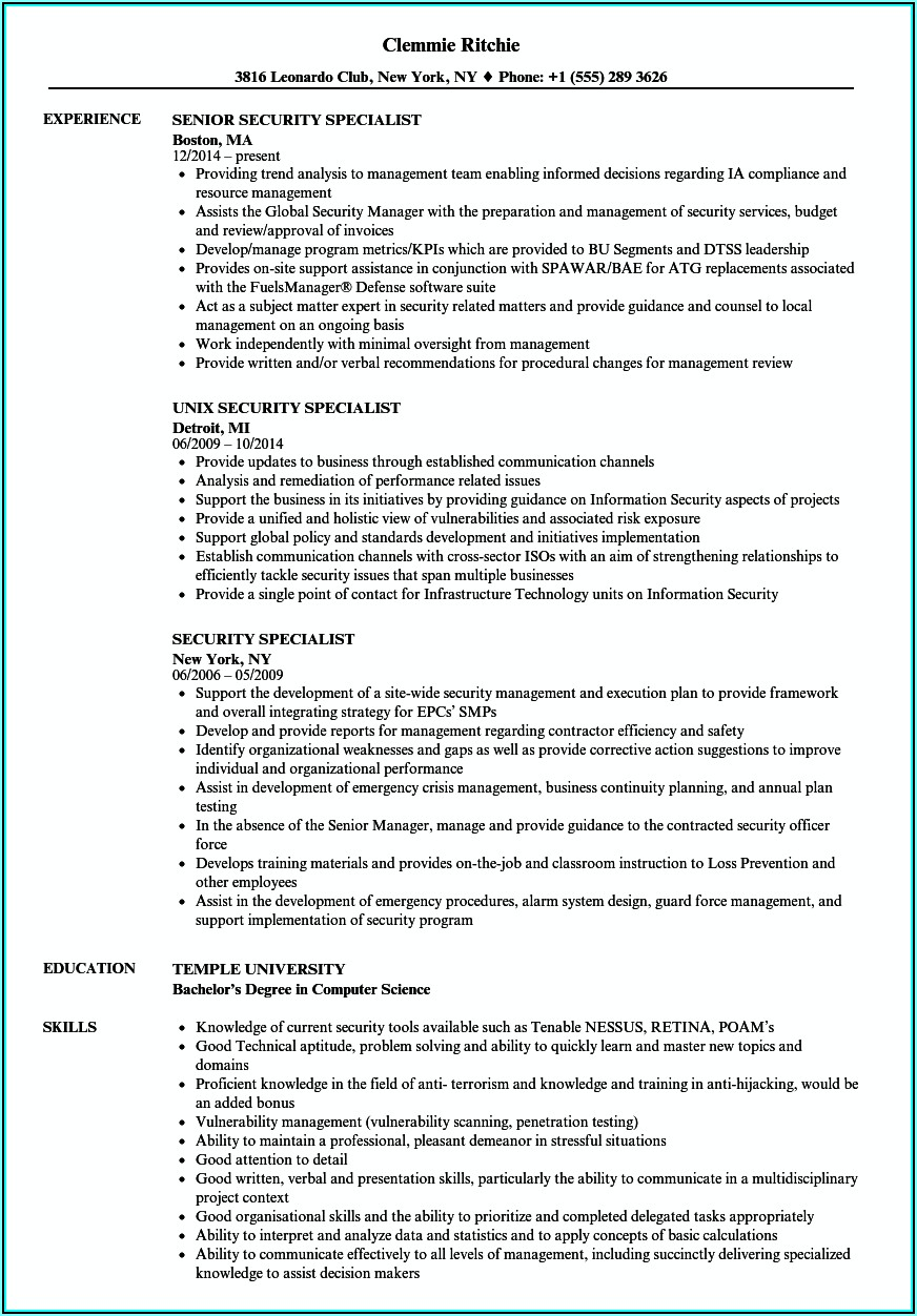 Nt Gov Resume Template