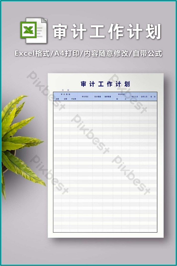 Audit Plan Template Excel Free Download