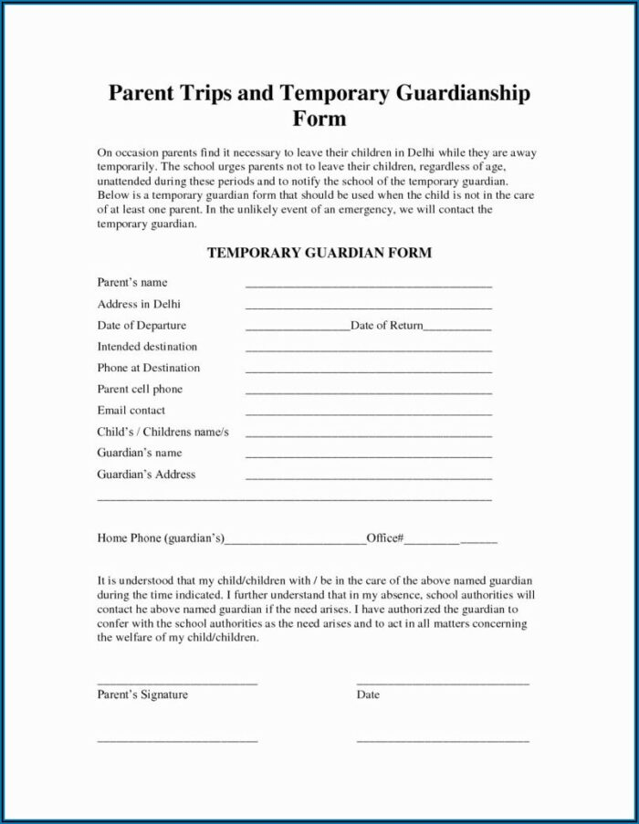 Temporary Legal Guardianship Form Florida