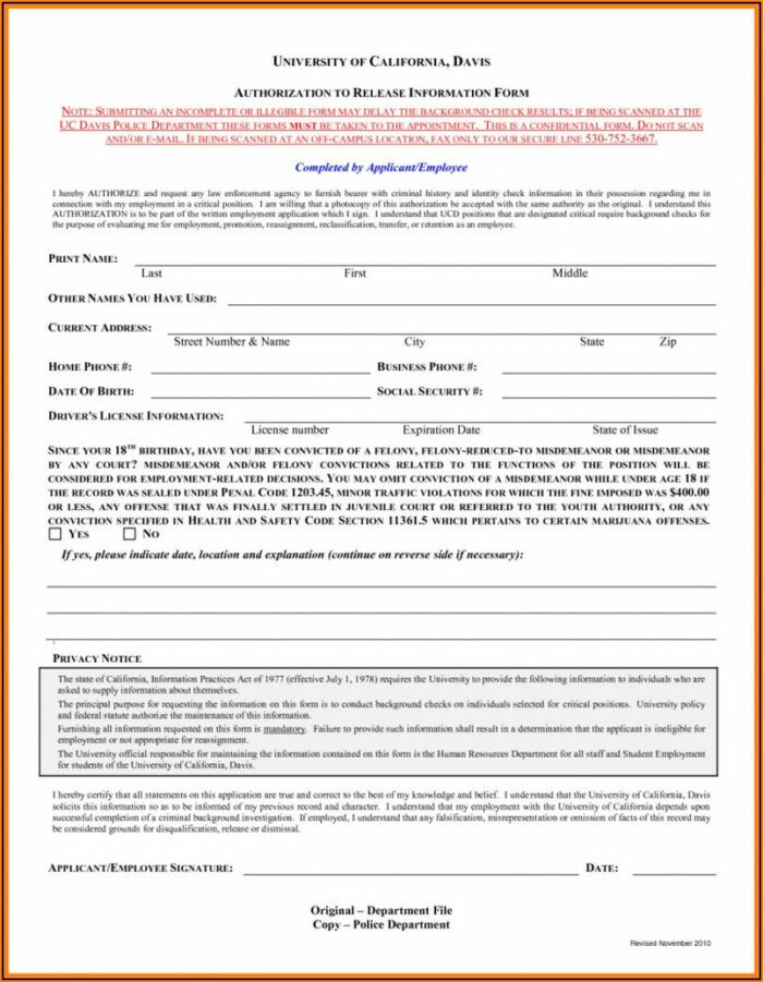 Background Check Authorization Form Template Word