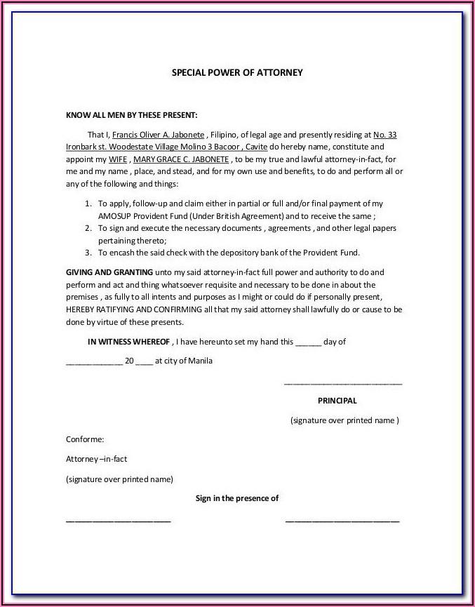 Codicils To Wills Forms