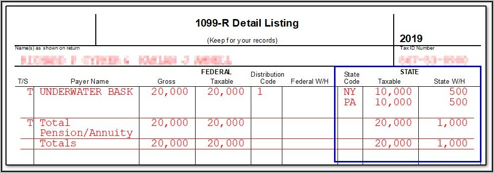 Form 1099 R Software