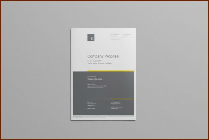 Free Company Proposal Template