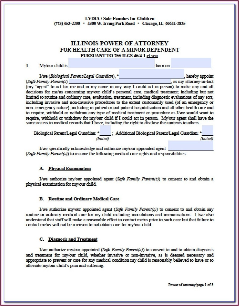 Free Illinois Financial Power Of Attorney Form