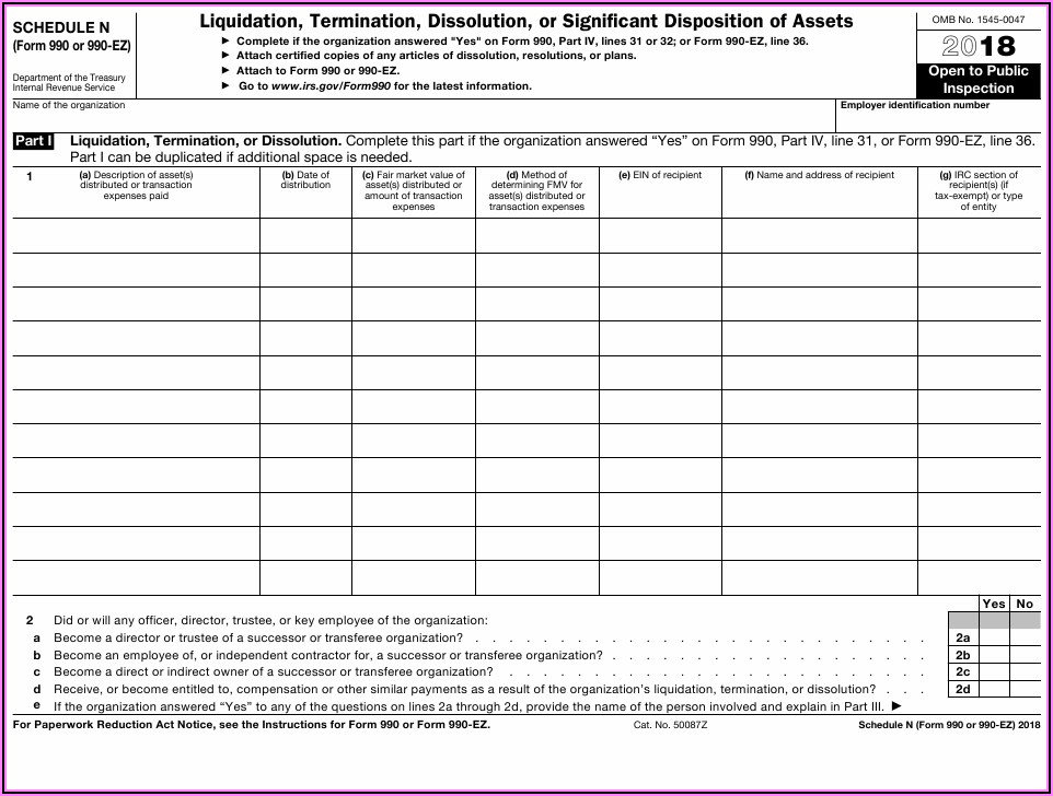 Irs Form 990 Schedule N Instructions
