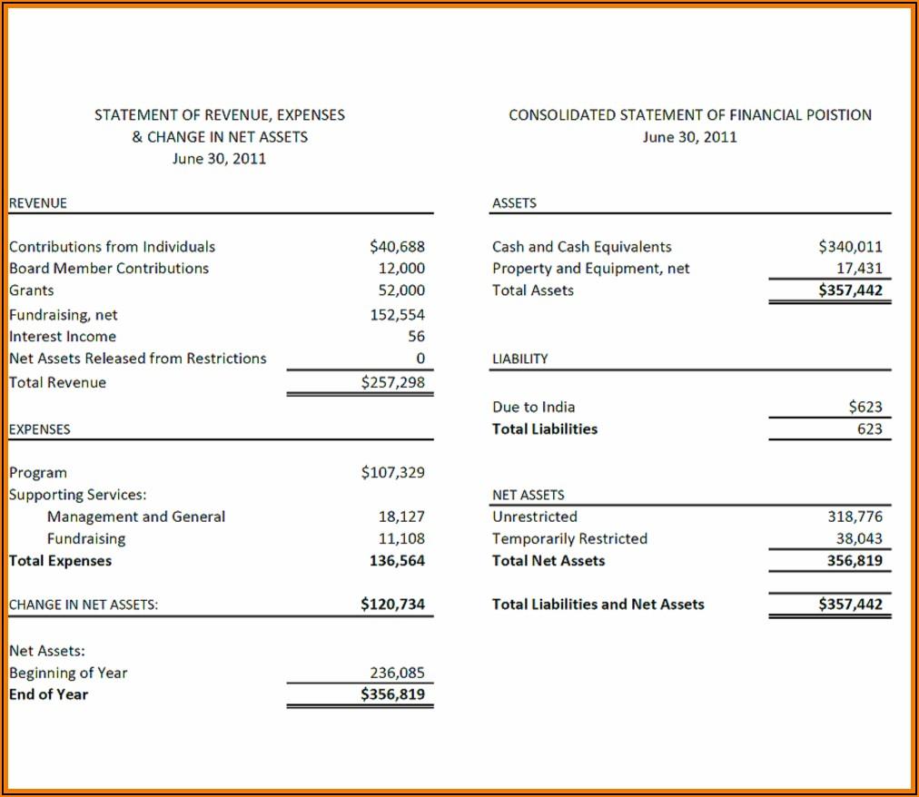 Llc Financial Statement Format